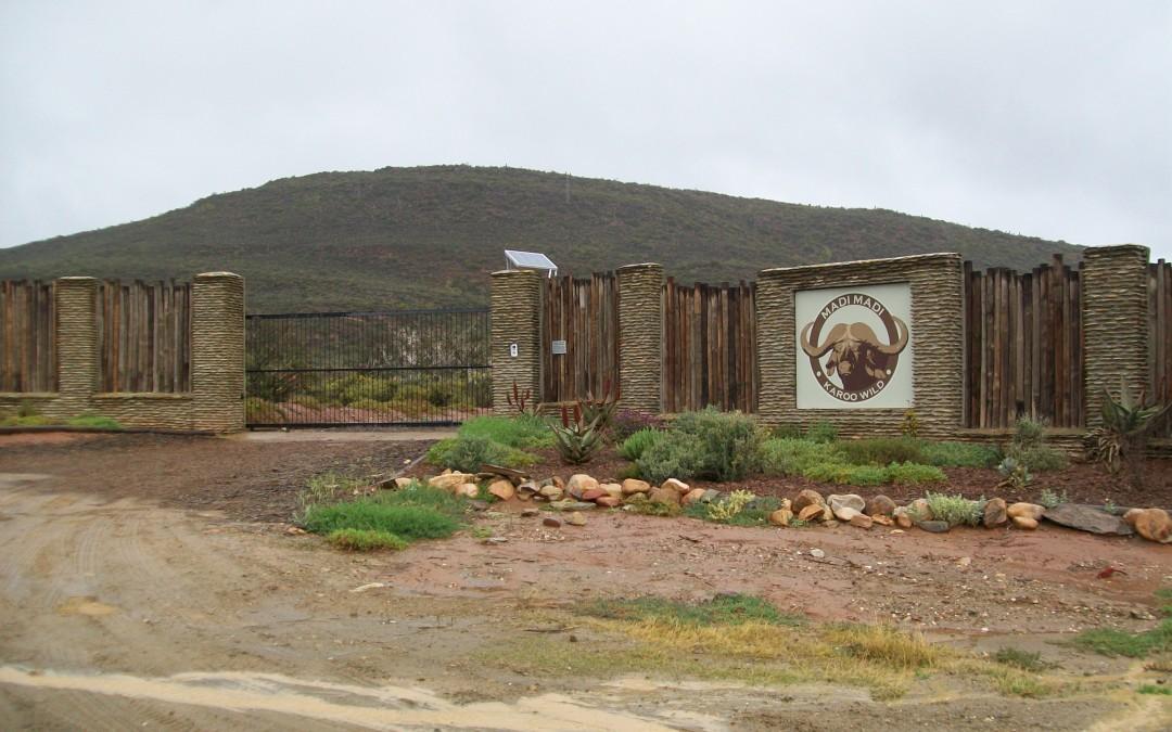 Travel | Madi-Madi Karoo Safari Lodge