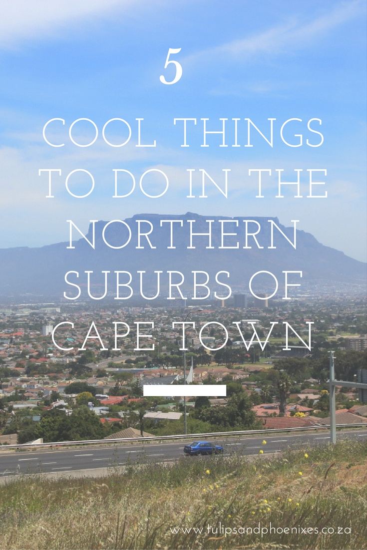 things to do cape town northern suburbs