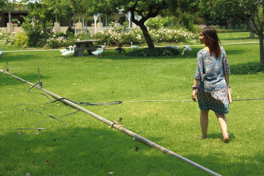 Life Update And The Blog's First Little Giveaway