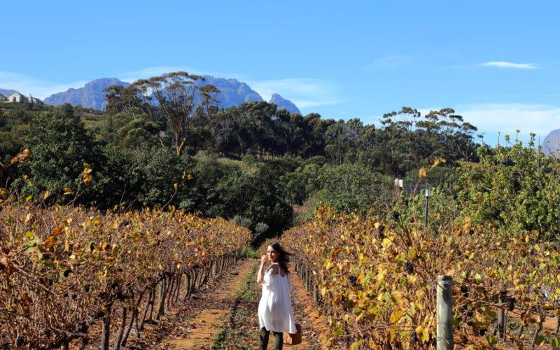 2 day Stellenbosch itinerary