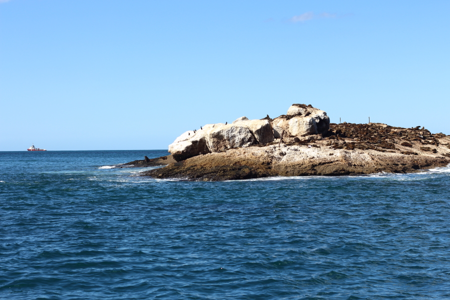 child friendly things to do in mossel bay