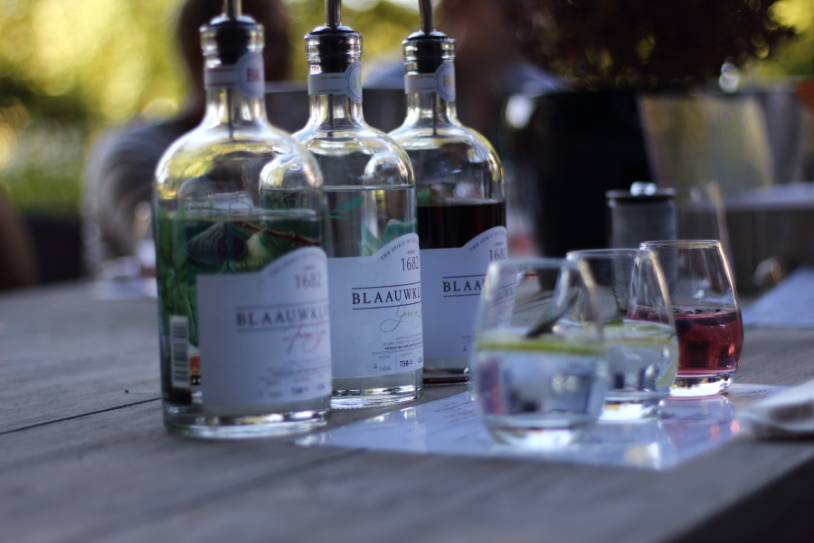 blaauwklippen gin